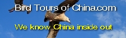 Bird Tours of China