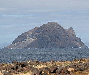 Bird Photos from the Cape Verde Islands